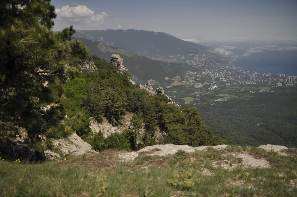 Taraktash-nachalo