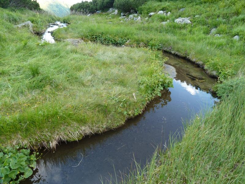 Река, вытекающая из озера Бребенескул