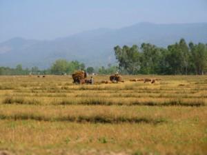perviy_den_v_nepale_04